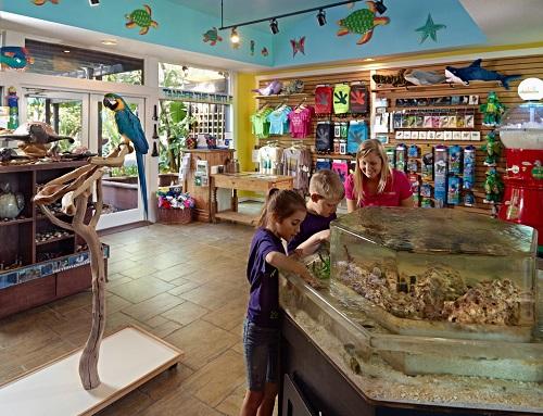 Top 20 Family-Friendly Activities on Amelia Island - Amelia